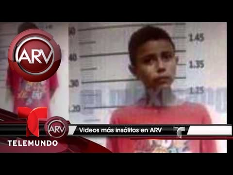 Las 10 historias más insólitas que se presentaron en ARV en el 2014 | Al Rojo Vivo | Telemundo