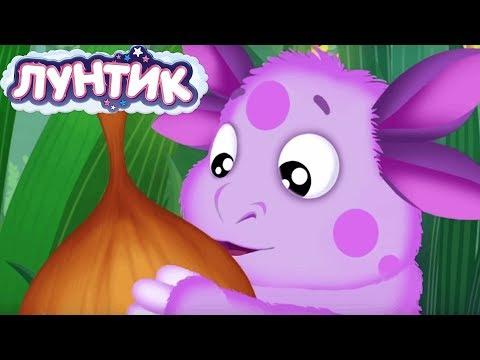 Лунтик | Луков день 🧅 Сборник мультфильмов для детей