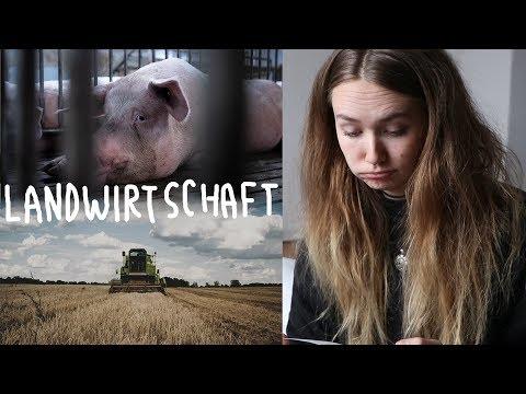 Kritik von Landwirten: meine Stellungnahme | Nachts in der Schweinezucht