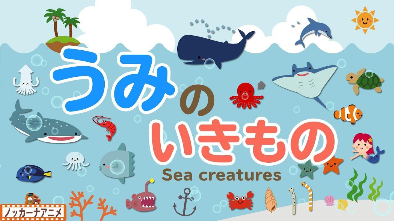 【海の生き物】ザブンともぐって海の中をみてみよう!名前をおぼえる知育アニメ【赤ちゃん・子供向け動画】Sea creatures animation for kids