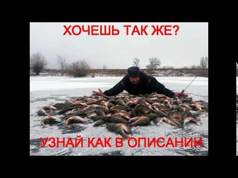 кормушка для прикормки рыбы