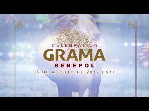 Celebration Grama 20 Anos 2019