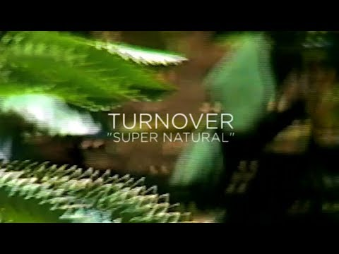 "Turnover - ""Super Natural"" (Official Audio)"