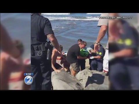 Kekaha Beach closed due to apparent shark bite