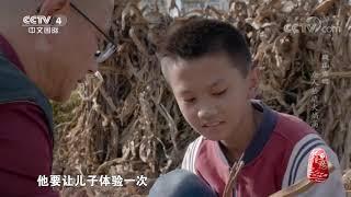 [记住乡愁]盛大的巍山火把节| CCTV中文国际