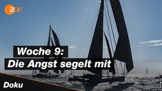 Die segelregatta vendée globe ist auf lange zielgerade atlantik eingebogen, viele skipperinnen und skipper segeln dem schmalen grat zwischen verzweif...