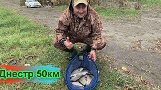 отчет по рыбалке за 20 11 2020 50 км Днестр за таможней
