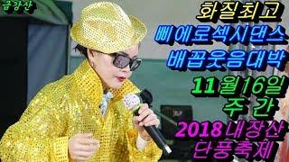 💗버드리 여보코믹대박💗 11월16일 주간 내장산 단풍축제 초청 공연