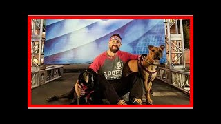 | Dog Rescue StoriesNinja Warrior Battles To Save Homeless & Exploited Dogs