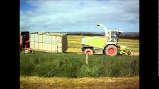 Silage New Zealand