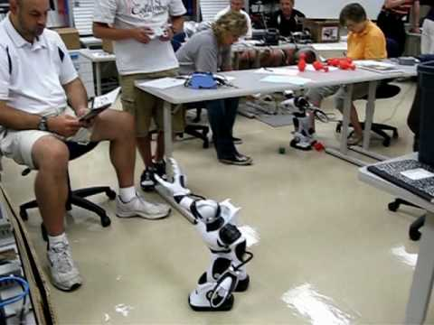 Summer Robotics Institute 2009