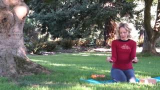 Eye Yoga, 56mins, Intermediate Yoga Class Namaste Yoga 243 Nourishing Your Vision