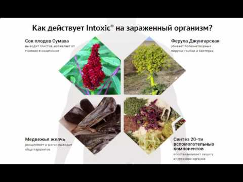 Антипаразитарное средство intoxic