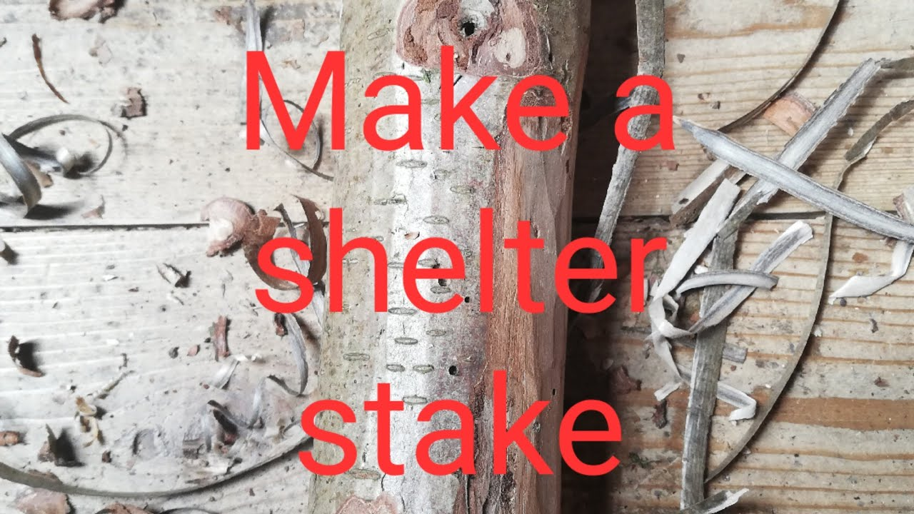 Make a shelter stake - Carve a wooden peg - Camp Skills