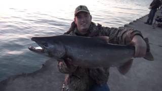 PIER CASTING SPOONS for KING SALMON
