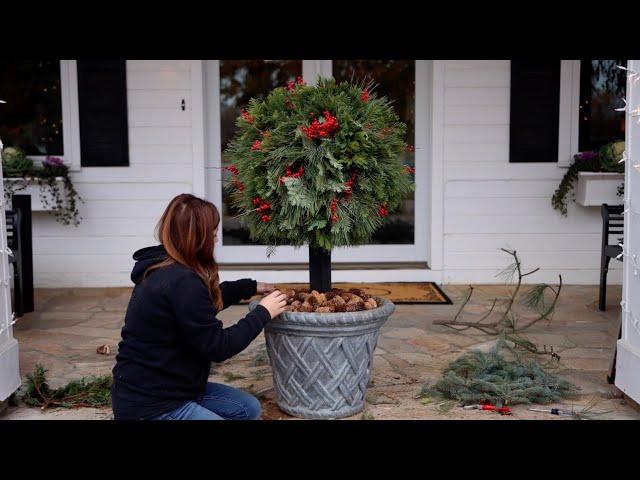 DIY Lollipop Topiary for Christmas // Garden Answer