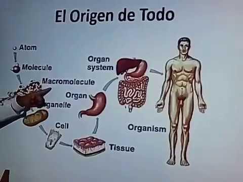 Dr. Gustavo Flores  JM Peru, Lima Dia 1, Parte 05