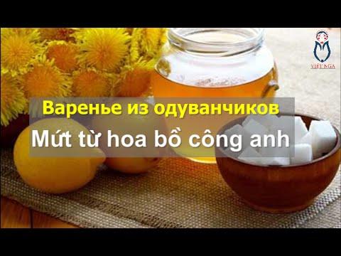 [Góc chia sẻ] Cách làm mứt từ hoa bồ công anh - Варенье из одуванчиков | Việt Nga