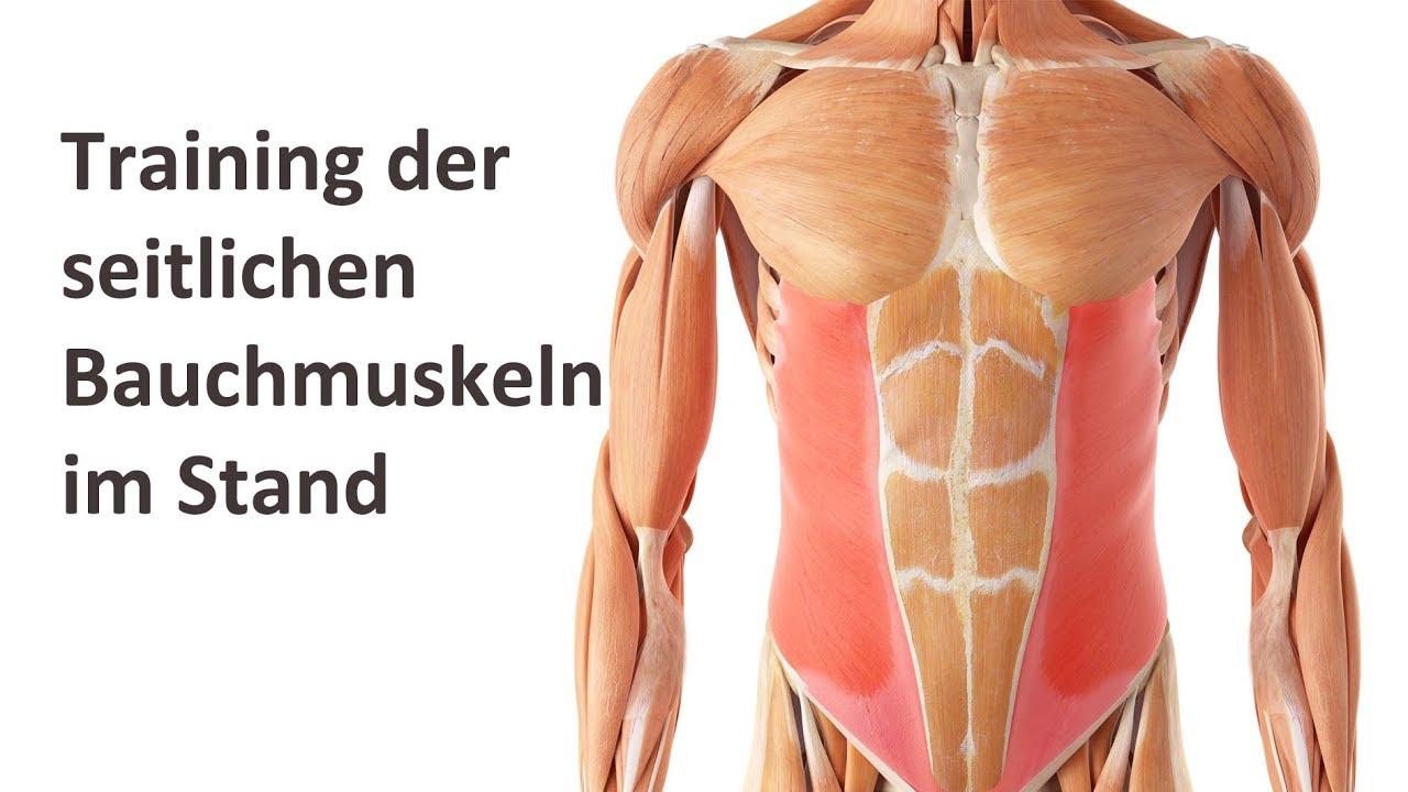Die Besten übungen Zur Stärkung Der Bauchmuskulatur