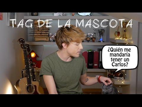 Carlos Marco - TAG de la mascota feat mi gato Mr.K