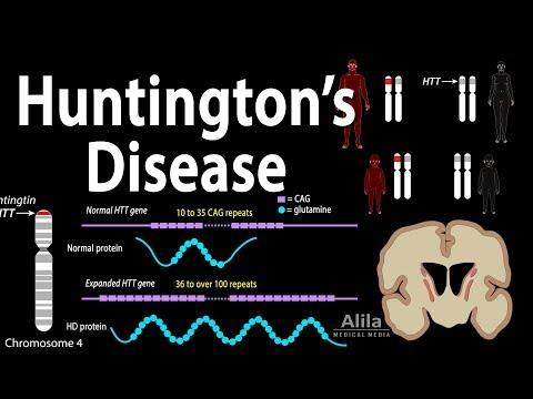 Huntington's Disease, Genetics, Pathology and Symptoms, Animation