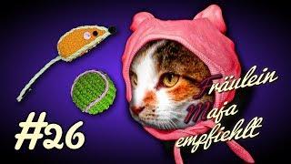 KatzenBin das Baby musst mich lieb haben 5 Gründe warum Katzen nie erwachsen werden 026