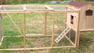 Creative Coops Hen House Starter Kit, Small