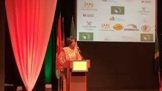 Africa Global Chamber of Commerce - Ambassador Dr. Arikana Chihombori-Quao in Chicago!!!!