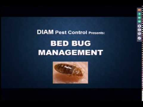Bed Bugs in the Healthcare Environment  4/11/18
