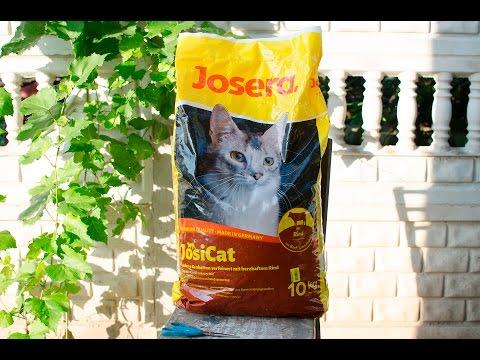 Josera JosiCat - Сухой корм для взрослых кошек и котов