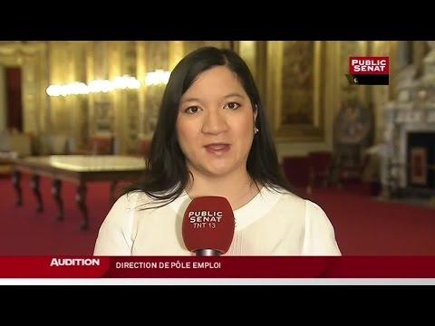 M. Jean BASSÈRES, candidat à la direction générale de Pôle emploi - AUDITION (10/12/2014)