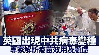 中共病毒變種 專家解析疫苗效用 |@新唐人亞太電視台NTDAPTV |20201223 - YouTube