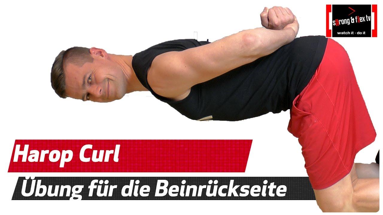 Harop Curl - Ischiocrurale Muskulatur trainieren - Knie ...