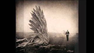 The Besnard Lakes -- Because Tonight