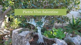 Pietre Vive Salentine