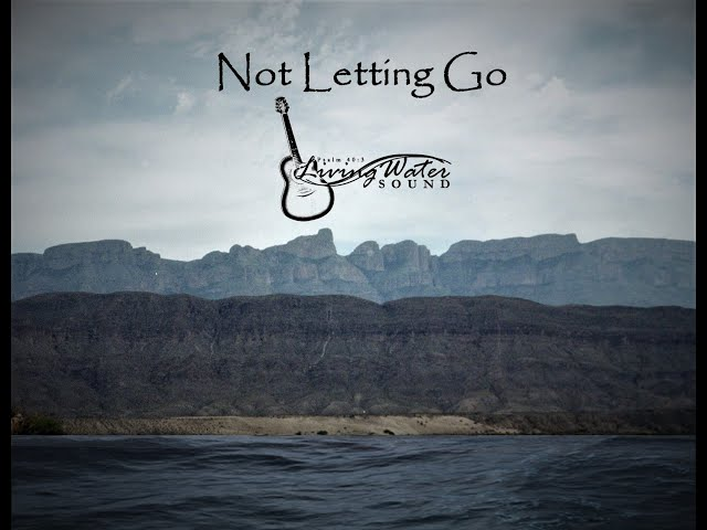 Not Letting Go Lyrics Video