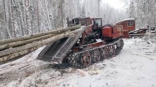 В мороз на волок , ТДТ 55.