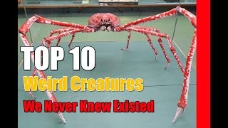 Top 10 Weird Creatures We Never Knew Existed