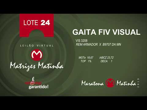 LOTE 24  Matrizes Matinha 2019