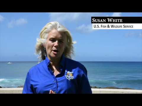 Susan White: Papahānaumokuākea