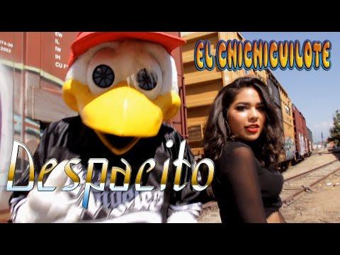 El Chichicuilote - Despacito - Best Teenagers Version!!