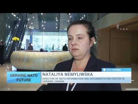 NATO rep Nataliya Nemyliwska on Alliance's help for Ukraine