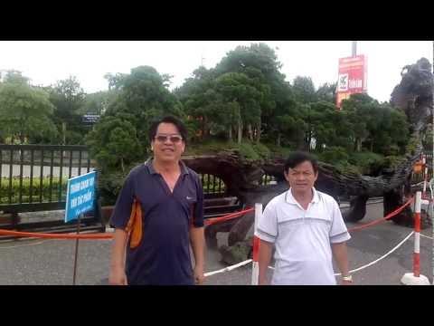 THĂM TRIỂN LÃM CÂY CẢNH-VIỆT TRÌ.mp4