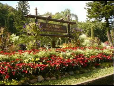 Krisdadoi, Thailand's Garden Paradise