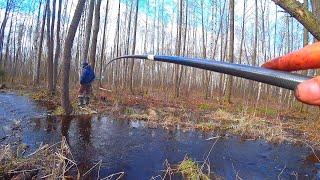 ТОРФЯНОЙ ручей ПОЛОН РЫБЫ! Ловля на удочку в проводку! Рыбалка на язя на поплавок и боковой кивок!