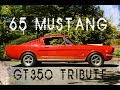 1965 Mustang Fastback 350 Tribute