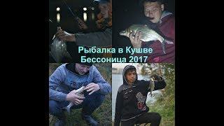 Рыбалка в Кушве -  Бессоница 2017