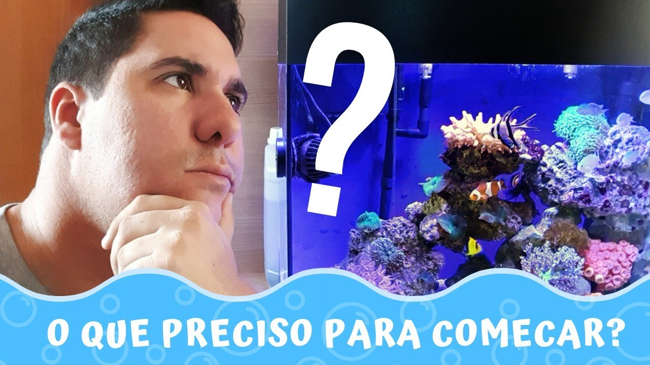 O que preciso saber para começar no aquarismo? | Aquário é Vida