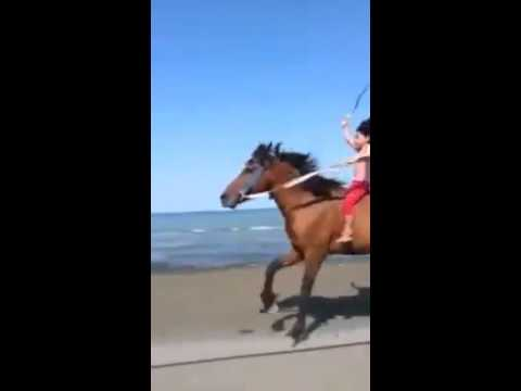 بنت راكبه حصان روووعه 😍