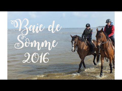 Baie de Somme 2016